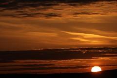 00101 red sunset (modekopp) Tags: goldenestunde sunset sundownsonnenuntergang 2017 sonnenuntergang2017 canoneos5dmarkivef100400mm canoneos5dmarkiv ef100400 canoneos5d 100400 eos5d canon eos 5d mark ivef100400mm iv100400 ef100400mm ivef100400 modekopp eifel