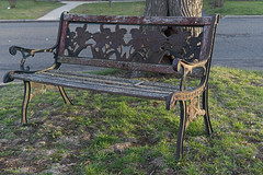 P4100877 (Paul Henegan) Tags: 32crop bench castiron goldenhour lawn street suburbia tree hbm