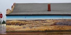 Duck Lake, mural (Red Calf Studio) Tags: colleenwatsonturner redcalfstudio ducklake sk mural bison coyotes wolves aspenparkland nativeprairie bisonherds