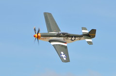 """P-51D Mustang """"Wee Willy"""" (Eleu Tabares) Tags: p51d mustang warplane aircraft airplane airshow wee willy"""