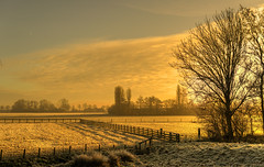 On these fields the Dutch grow their gold. (Alex-de-Haas) Tags: 50mm d5 dutch hdr january nederland nederlands netherlands nikkor nikkor50mm nikon nikond5 noordholland thenetherlands warmenhuizen westfrieseomringdijk bevroren cityofwarmenhuizen cold daglicht daylight frozen gevroren handheld highdynamicrange icy januari koud landscape landschap licht light overdag polder polderlandschap sun sunray sunrays sunbeams sunny sunrise winter zon zonnestralen zonnig zonsopgang