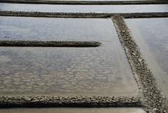 Marais salants de Guérande (chrisdescimes) Tags: geometrie terre marais sel