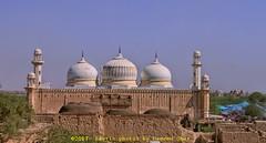 پنجاب دے رنگ | Colors of Punjab (C@MARADERIE) Tags: پنجاب پنجابدےرنگ جنوبیپنجاب پاکستان کلچر horizontal historical derawar colorful colorimage mosque