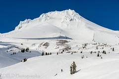 NT3.0078-PDX1700416_60543 (LDELD) Tags: oregon spring mounthood snow timberlinelodge