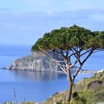 Sant'Angelo d'Ischia  ##### EXPLORE##### thumbnail