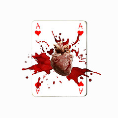 ace of hearts (brescia, italy) (bloodybee) Tags: 365project playingcards cards play game a ace heart anatomy blood humor fun stilllife white red square