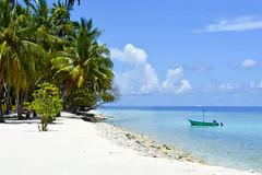 DSC_0197 (Shine2705) Tags: dharavandhoo baa maldives