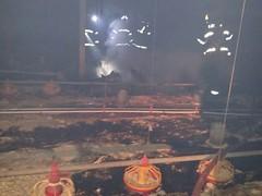 Quase 18 mil pintinhos morrem em incêndio em Uberaba (portalminas) Tags: quase 18 mil pintinhos morrem em incêndio uberaba