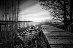 To sail no more (jarnasen) Tags: nikon d810 nikkor 1635mmf4 tripod longexposure le mono monochrome bnw blackandwhite svartvit movement boat reed jetty woodenjetty mood trees sky clouds light shadows rowboat dinghy water landscape landskap nordiclandscape lakescape vättern sjökärret motala östergötland sweden sverige scandinavia geo gallery geotag copyright järnåsen jarnasen nature outdoor perspective pov dof