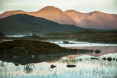 "Rannoch Moor. (Scotland by NJC.) Tags: scotland sunrise dawn daybreak sunup morning daylight شُروقُ الشَّمْس ""nascer do sol"" 日出 ""izlazak sunca"" ""východ slunce"" solopgang zonsopgang amanecer auringonnousu ""lever du soleil"" sonnenaufgang alba 日の出 mist haze fog vapour shrouded veiled ضَبَابٌ névoa 薄雾 izmaglica mlha tåge neblina usva brume ""leichter nebel"" καταχνιά foschia もや 안개 tåke mgiełka mountains hills highlands peaks fells massif pinnacle ben munro heights جَبَلٌ montanha 山 planina hora bjerg berg montaña vuori montagne βουνό montagna fjell"