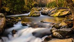 Cascades on Big Creek (ArmyJacket) Tags: baxtercreek baxtercreektrail bridge greatsmokeymountainsnationalpark gsmnp appalachians mountains hike outdoors water waterfall creek northcarolina nationalpark bigcreek bigcreektrails