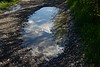 upside down ( after the rain) (PaoloCristina) Tags: rain clouds mirror water upsidedown puddle