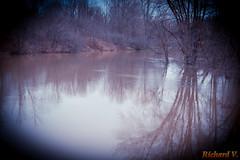 Débordement du ruisseau - Gatineau, filtre golden - 2720 (rivai56) Tags: gatineau québec canada débordement du ruisseau sonyphotographing