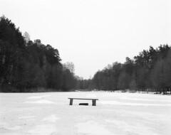 0024 (kabatskiy) Tags: winter february snow forest lake frozen frozenlake ice nature outdoors blackandwhite blackwhite monochrome bench