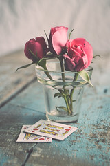 flowers are divine (Ayeshadows) Tags: roses 3 queenofhearts kingofhearts playingcards glassvase 7dwf flora divine