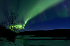 042017 - Lights heading up the Salcha River (Nathan A) Tags: alaska ak fairbanks salcha northstar river spring cold ice snow night aurora auroraborealis northernlights nightsky stars farnorth geomagnetic green nature outdoors beauty skygazing