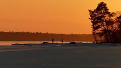 Golden hour above the frozen sea (Lauttasaari, Helsinki, 20170305) (RainoL) Tags: 2017 201703 20170305 balticsea drumsö fin finland fz200 geo:lat=6015453082 geo:lon=2487338123 geotagged goldenhour helsingfors helsinki hevosenkenkälahti hästskoviken ice lauttasaari march nyland sea seashore sunset uusimaa water winter