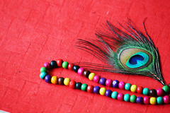 colors all in one (usha_karma) Tags: feathers peacockfeather nature green blue purple macro colors wallpaper celebrations shades accessories life fashion culture religion hinduism hindugod lordkrishna love symbols pearls necklace lifestyle jewelry valentine'sday artjewelry