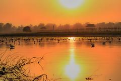lac taungthaman (Ar-photography.fr) Tags: birmanie lac mandalay myanmar golden sunset sun landscape paysage lake