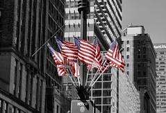 """Keep on rockin' in the free world"" - Neil Young (Lidiya Nela) Tags: patriotic americanflag starsspangledbanner startsandstriped nyc city urban usa manhattan newyork newyorkcity street streetphotography partialcolor selectivecolor redwhiteandblue flags"