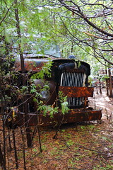 IMG_2634 (Irina Souiki) Tags: rusty crusty cars mcleansautowreckers milton ontario old oldcars