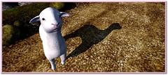 Did Mary Have a Lamb at All? (Art of Storm) Tags: sl slphoto secondlife secondlifephoto animal lamb