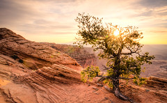 Canyonlands National Park, Utah (Gman1351) Tags: landscape utah moab