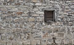 Paredes de Higueras. (Orcoo) Tags: door house window wall mexico ventana pared casa arquitectura puerta o nuevoleon higueras ordoez orcoo oswaldoordoez