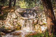 """""""Descanso Garden"""" (Syphon72) Tags: travel nature f14 sigma35mm canon7d"""