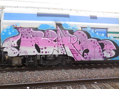 DSCN5831 (en-ri) Tags: train writing torino graffiti bears rosa azzurro