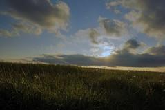 Sunset (lewist584) Tags: sunset grass clouds sony kitlens fields 1855mm luxembourg luxemburg 1855mmkitlens nex 1855mmf3556 lieler emount nex5r sonynex5r