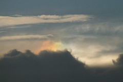Sundog hiding behind clouds (Zelda Wynn) Tags: nature weather clouds auckland cumulus sundog cirrus atmosphericoptics optics troposphere zeldawynnphotography