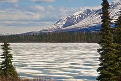 USA - Alaska (Herculeus.) Tags: snow mountains ice river ak cabins trestles 5photosaday alaskanrange denalinp talkeetnatodenali