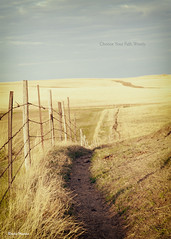 Choose Your Path Wisely (Sierragoddess) Tags: ranch sky grass fence cow path farm pasture northdakota prairie agriculture darlahueske focusonthespirit