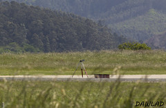 Tripode en pista 29 (Dawlad Ast) Tags: santiago del airport ast internacional asturias international mayo monte 29 aeropuerto pista mediciones 2014 ranon leas ovd mantenimiento