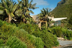 Capella Lodge, Lord Howe Island, NSW, Australia (Black Diamond Images) Tags: australia nsw capella lordhoweisland luxuryaccommodation worldheritagearea luxuryaccomodation capellalodge mtlidgbird thelastparadise touristaccommodation