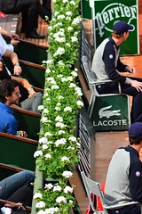 Roland Garros French Open 2014-27.jpg (London Tennis Photography - Kelvin Lee) Tags: red france sports grass kids buzz lens action blondes crowd lawn atp photographers goat ibm nike emirates tennis
