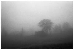 Beskidy 5 (Spartaxus) Tags: bw mountains fog analog kodak tmax beskidy