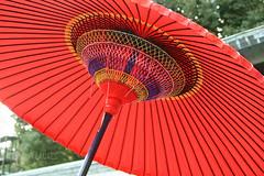 Japanese umbrella (Anthony-Lacaes) Tags: wedding japan umbrella photography tokyo photo shrine traditional ceremony clothes hakama anthony mariage shinto japon meiji japonais ceremonie japonaise japonaises kimoni traditionnel traditionnelle lacaes