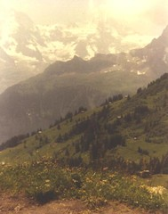 Swiss Valley view along walk. (RMD Observations) Tags: vacation rose switzerland anton 1986