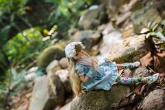 queendom (wheen.) Tags: gardens botanical doll dream bjd penang rise volks dolfie kujikawa