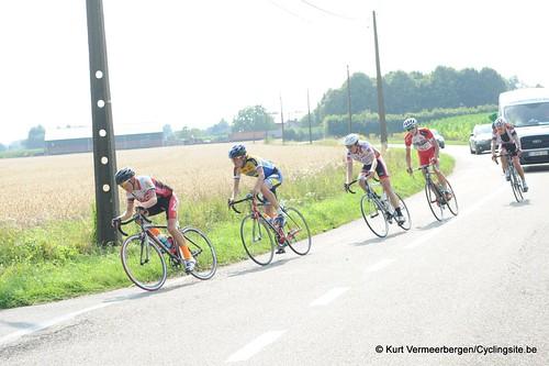 Geel Oosterlo  (162)