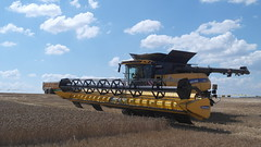 New Holland Mietitrebbia CR 10.90 (9) (Image Line) Tags: newholland raccolta cereali mietitrebbie proveincampo newhollandcr