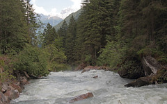 Val di Genova - Sarca 10062014 013-a (ab.130722jvkz) Tags: fiumi trentinoaltoadige valdigenova grruppoadamellopresanella