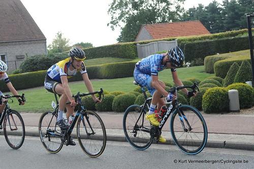Geel Oosterlo  (253)