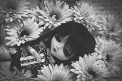 Update (Rinoninha) Tags: blackandwhite bw blancoynegro doll handmade bn pullip blanche mueca amano nnelleetlalluli