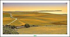 ESCALLES (rgisa) Tags: france north champs cap fields cape nez blanc nord cran pasdecalais escalles