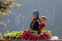 _U1H6208 H'mong People in Sapa,0217 (HUONGBEO PHOTO) Tags: dântộchmông laocai sapa northvietnam asia hmongbrocadedress farmland countryside sale outdoor landscape beetroot vegetable highlands children hmongpeople ethnicminorities