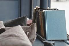 Pub Windowsill [49/365 2017] (_ _steven.kemp_ _) Tags: st andrews brewhouse norwich window windowsill books cushion wall blue turquoise fabric texture