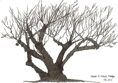 Malaga Museo di Picasso (panda1.grafix) Tags: malaga museodipicasso sketch blackandwhitesketch